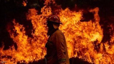 Photo of أستراليا تتنفس الصعداء أمل جديد لإخماد الحرائق المستعرة