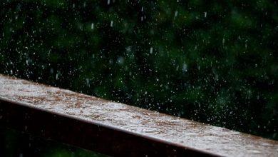 صورة عاصفة جديدة تجتاح البلاد امطار ، عواصف رعدية ، رياح قوية