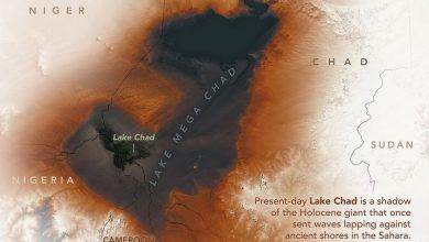 Photo of صورة غريبة من ناسا تظهر اكتشافا مفاجئا وسط إفريقيا!