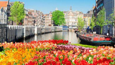 Photo of أجمل الأماكن السياحية في أمستردام