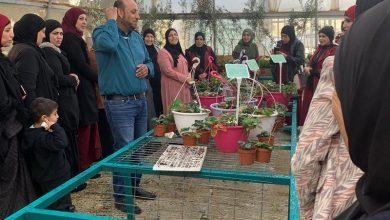 Photo of عرعرة النقب: ضمن يوم العائلة مدرسة السلام تنظم يوما للام وتشكل منتدى للامهات