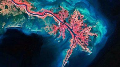 Photo of صور تأخذ الأنفاس من الفضاء لكوكبنا، شاهدوا كيف نبدو من هناك !