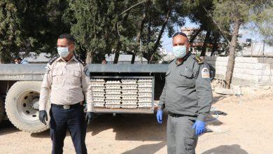 Photo of الضابطة الجمركية في بيت لحم تحبط محاولة تهريب اكثر من 400 طبق بيض الى اسرائيل