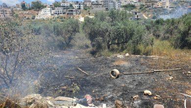 Photo of قوات الاطفاء تسيطر على حريق شرقي مدينة الطيبة