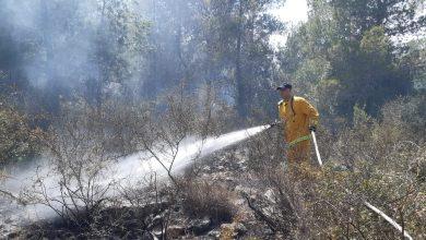 Photo of اندلاع حريق في منطقة وعرية في برطعة