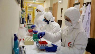 """صورة 8 وفيات و504 إصابات جديدة بفيروس """"كورونا"""" في فلسطين"""