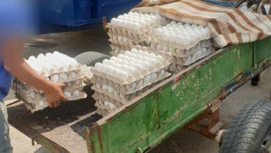 Photo of كفر قاسم:اعتقلت الشرطة الإسرائيلية قاصرين من الضفة يبيعون بيضاً فاسدا