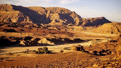 """صورة صحيفة """"معاريف"""" تكشف عن سرقة إسرائيل آثارا مصرية في سيناء"""