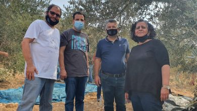 """صورة نواب الجبهة ونشطاؤها يشاركون بمبادرة """"قطف الزيتون ضد الاحتلال"""" في الضفة المحتلة"""